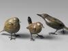 Les petits oiseaux de jardin