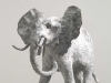 L'Eléphant / De Olifant