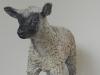 L'agneau 01